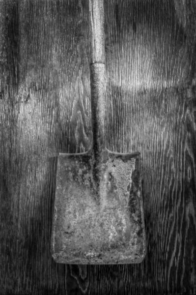 Shovel Photograph - Square Point Shovel 3 by YoPedro