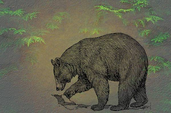 Wall Art - Mixed Media - Black Bear by Movie Poster Prints