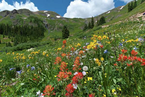 Photograph - Black Bear Pass Landscape by Cascade Colors