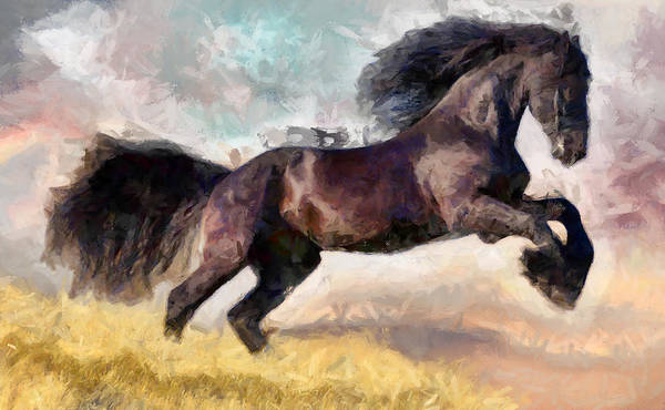 Digital Art - Black Beauty by Caito Junqueira