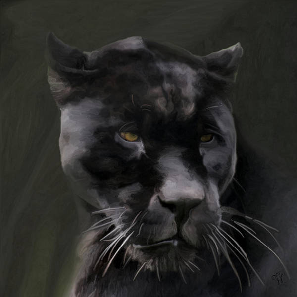 Big Cat Digital Art - Black Beauty by Vic Weiford