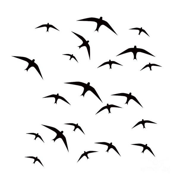 Wall Art - Digital Art - Black Birds Flight by Arletta Cwalina