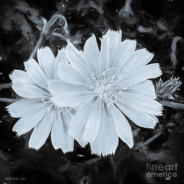 Blue Daisy Twins Bw Art Print