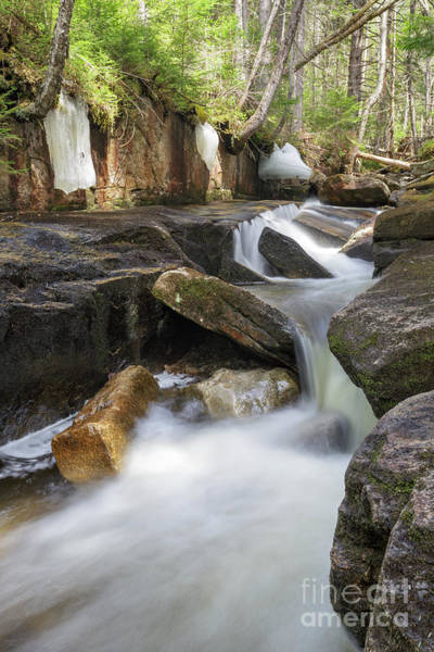Photograph - Black Brook - Carroll, New Hampshire by Erin Paul Donovan