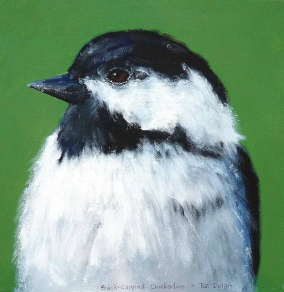 Painting - Black Capped Chickadee by Pat Dolan