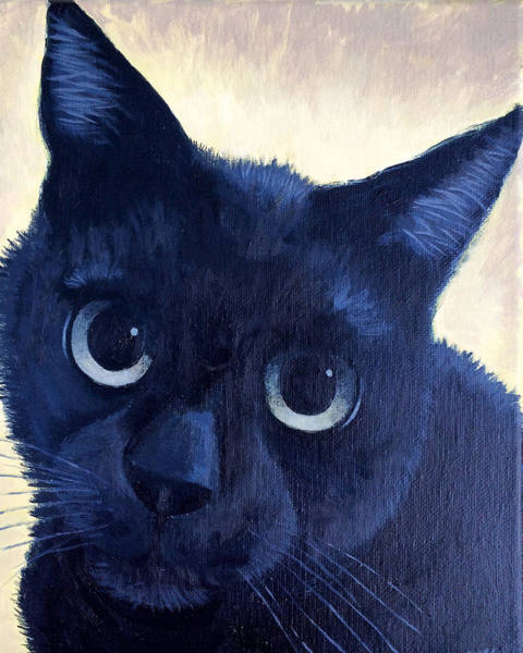 Painting - Black Cat by Dustin Miller