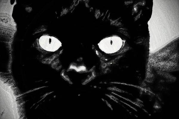 Photograph - Black Cat by Gina O'Brien