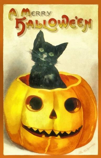 Photograph - Black Cat In A Large Pumpkin by Ellon Clapsaddle