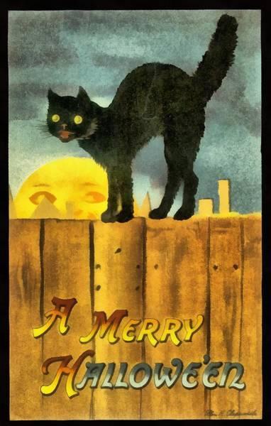 Photograph - Black Cat Merry Halloween by Ellen Clapdaddle