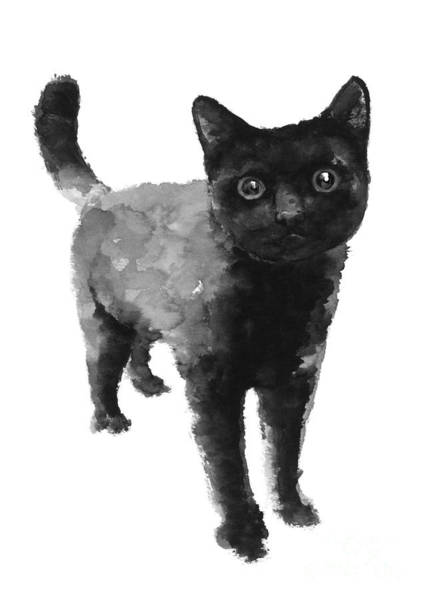 Kitten Wall Art - Painting - Black Cat Watercolor Painting  by Joanna Szmerdt