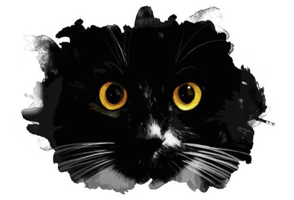 Painting - Black Cat, Yellow Eyes by Andrea Mazzocchetti