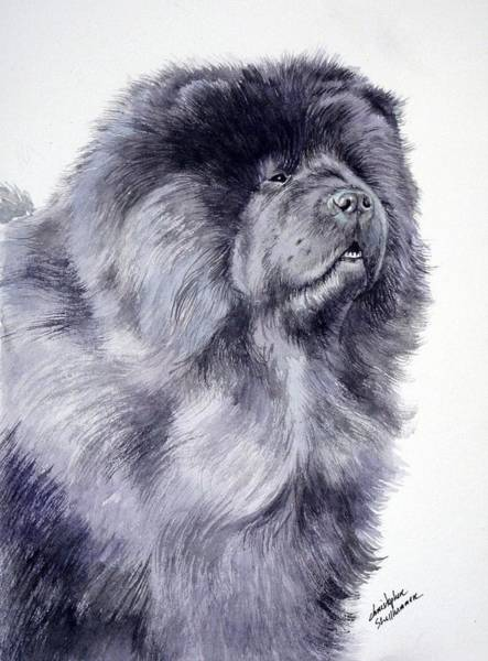 Painting - Black Chow Chow  by Christopher Shellhammer
