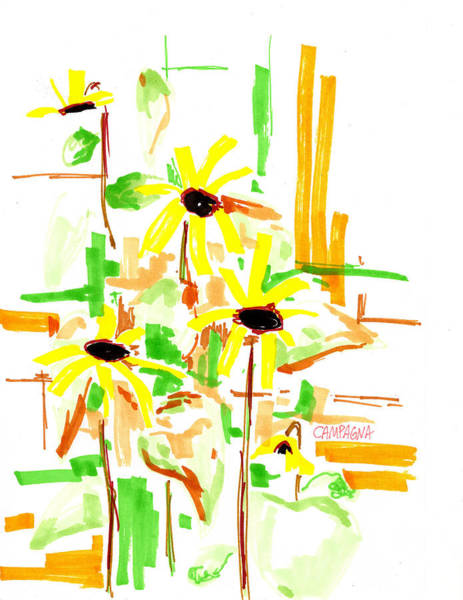 Light Blue Drawing - Black Eyed Susans by Teddy Campagna
