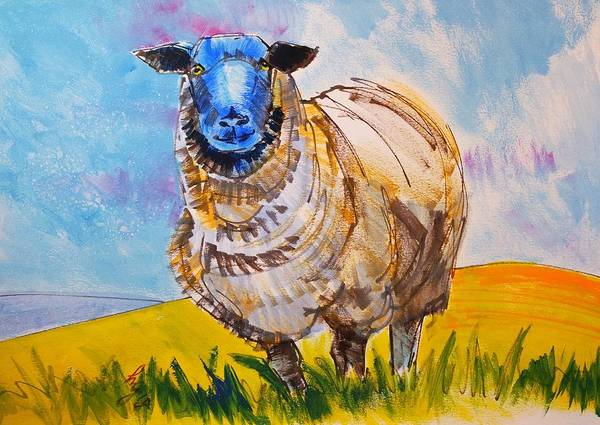 Drawing - Black Face Sheep In Field Painting by Mike Jory