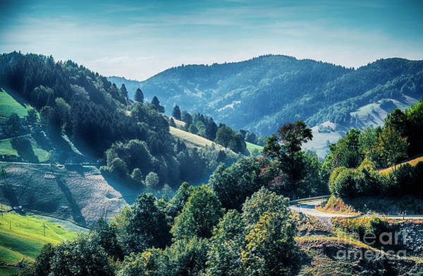 Photograph - Black Forest Aria, Germany by Ariadna De Raadt