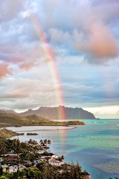 Photograph - Black Friday Rainbow by Dan McManus