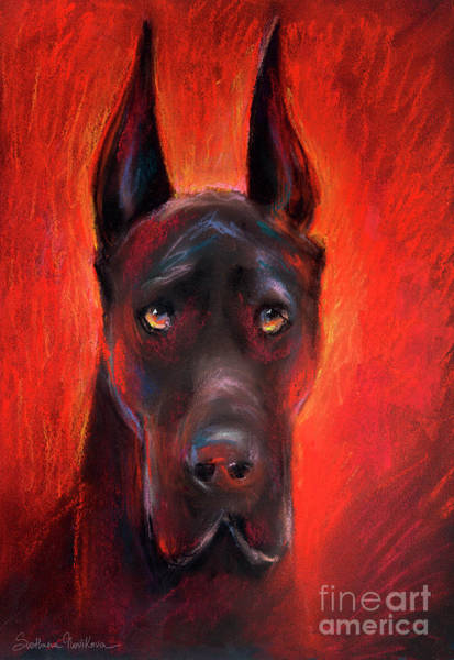 Pastel Portrait Wall Art - Painting - Black Great Dane Dog Painting by Svetlana Novikova