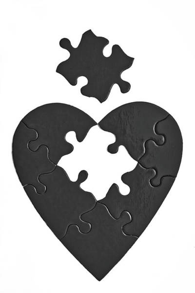 Wall Art - Photograph - Black Heart Puzzle by Garry Gay