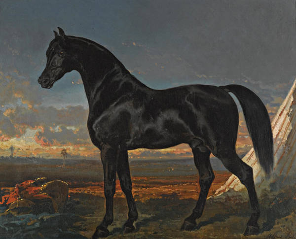 Wall Art - Painting - Black Horse With Palm Tree by Alfred de Dreux