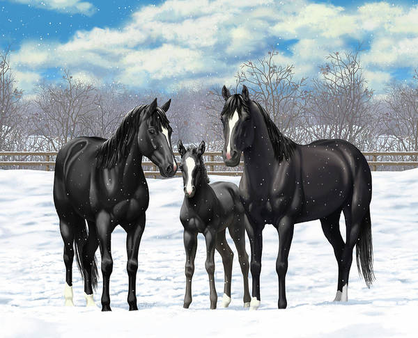 Wall Art - Painting - Black Horses In Winter Pasture by Crista Forest