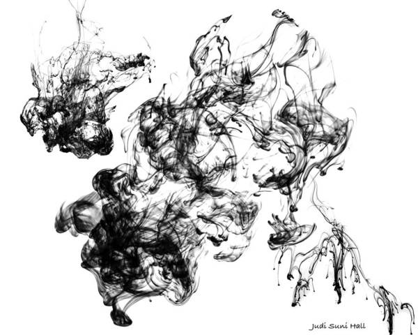 Digital Art - Black Ink Abstract by Judi Suni Hall