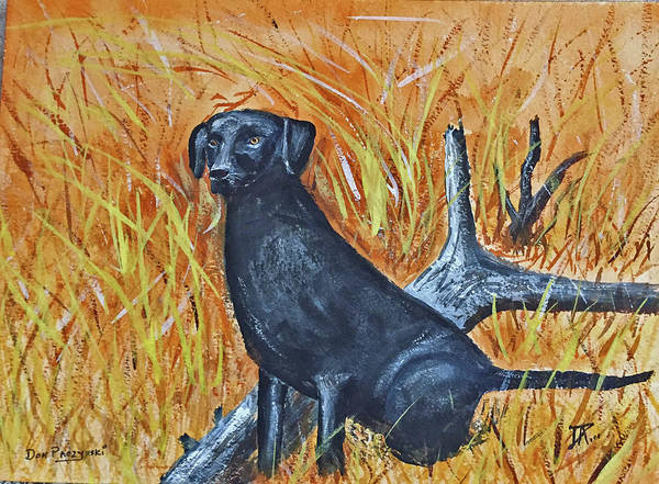 Painting - Black Lab-2 by Donald Paczynski