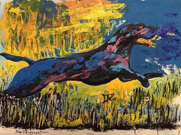 Painting - Black Lab by Donald Paczynski