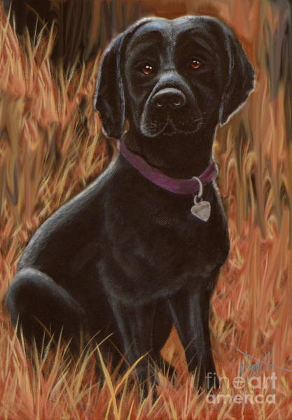 Digital Art - Black Lab Hunter by Marilyn Smith