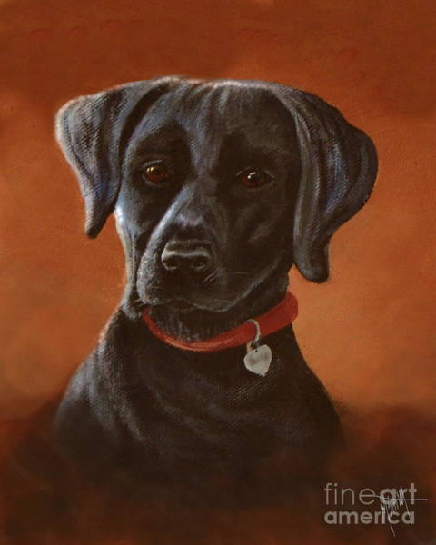 Digital Art - Black Lab Portrait by Marilyn Smith