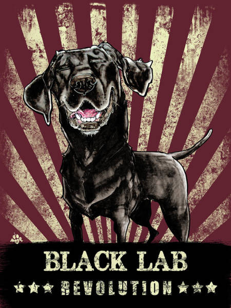 Drawing - Black Lab Revolution by John LaFree