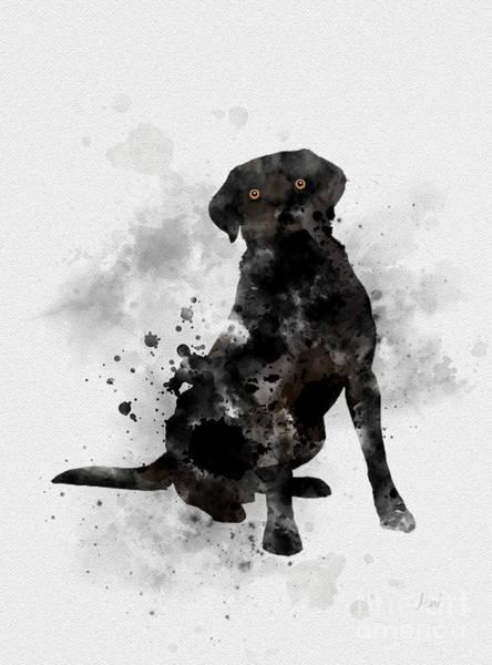 Dog Mixed Media - Black Labrador by My Inspiration