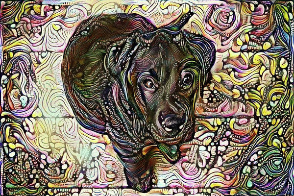 Digital Art - Black Labrador Retriever Pup by Peggy Collins