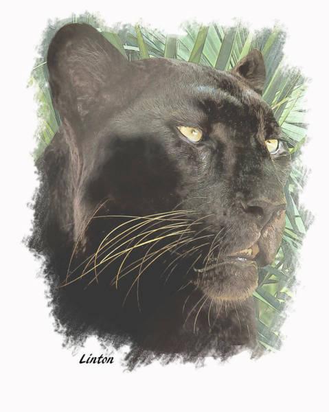 Digital Art - Black Leopard by Larry Linton