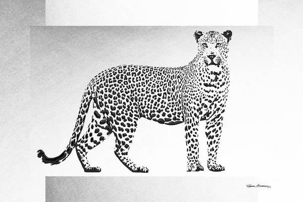 Digital Art - Black Leopard On White Canvas by Serge Averbukh