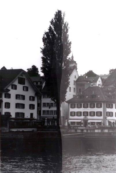 Photograph - Black Lucerne by Christian Eberli