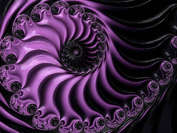 Digital Art - Black Magic by Susan Maxwell Schmidt