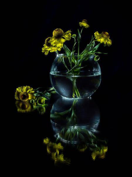 Photograph - Black Mirror by Alexey Kljatov