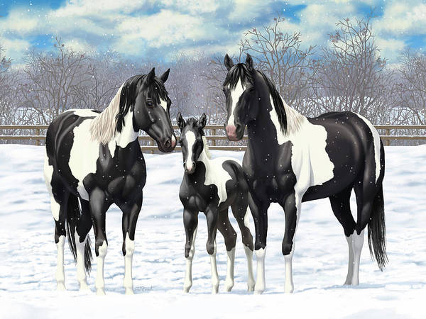 Wall Art - Painting - Black Paint Horses In Winter Pasture by Crista Forest