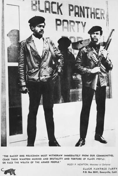 Wall Art - Photograph - Black Panther Poster, 1968 by Photo Researchers
