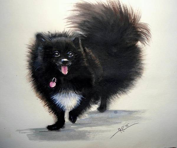 Black Pomeranian Dog 3 Art Print