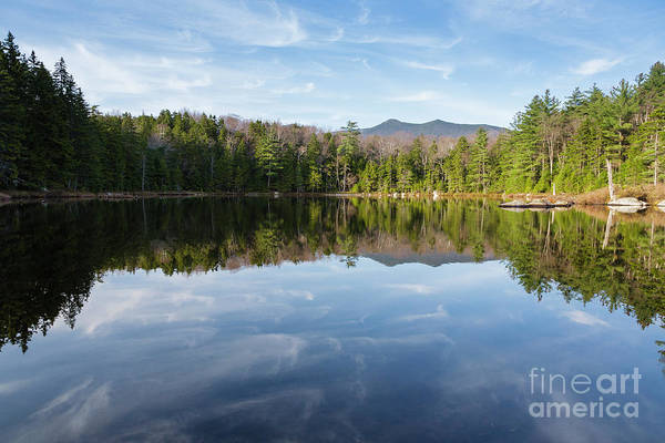 Photograph - Black Pond - Lincoln, New Hampshire by Erin Paul Donovan