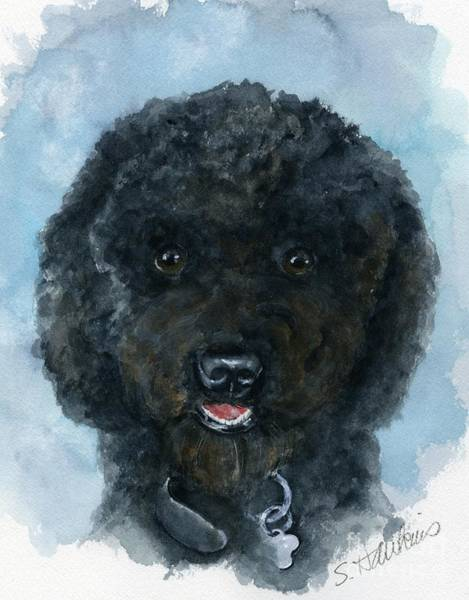 Wall Art - Painting - Black Poodle Puppy by Sheryl Heatherly Hawkins