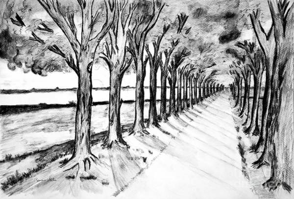 Grey Skies Drawing - Black Promenada by Ramona Matei