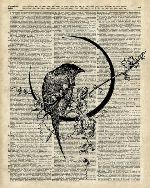 Raven Drawing - Black Raven Bird by Anna W