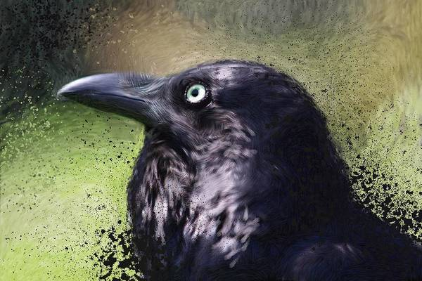 Dingy Digital Art - Black Raven With Green Eyes by Chris Bradley