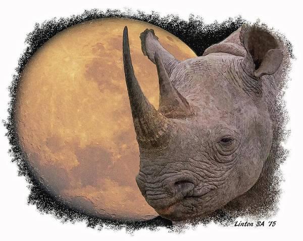 Digital Art - Black Rhinoceros by Larry Linton