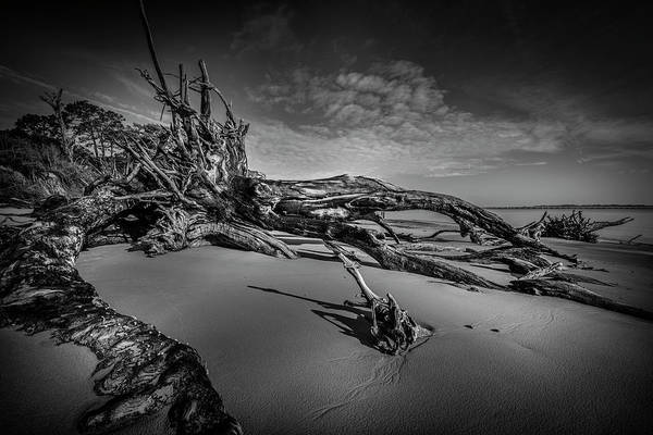 Photograph - Black Rock Beach by Peter Lakomy