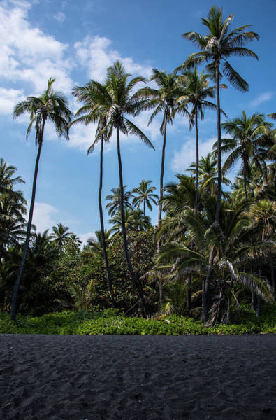 Photograph - Black Sand Paradise by Jennifer Ancker