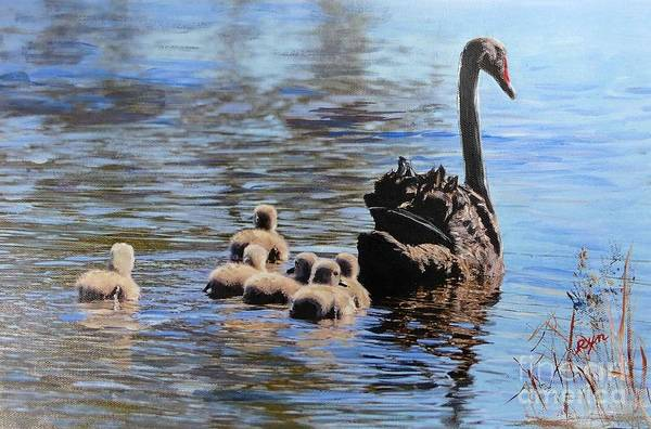 Painting - Black Swan And Cygnets No 2 by Ryn Shell