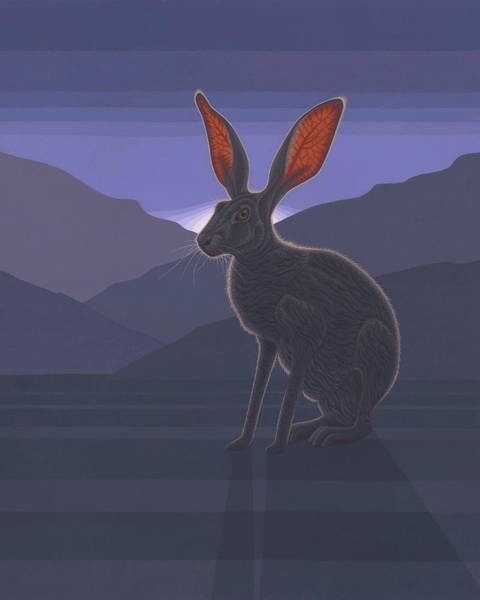 Wall Art - Painting - Black-tailed Jackrabbit by Nathan Marcy